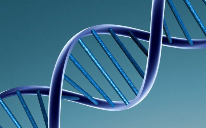 prova scientifica dna
