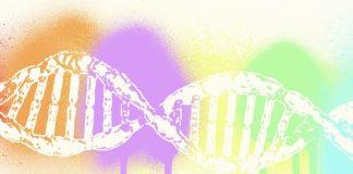 Esame del DNA